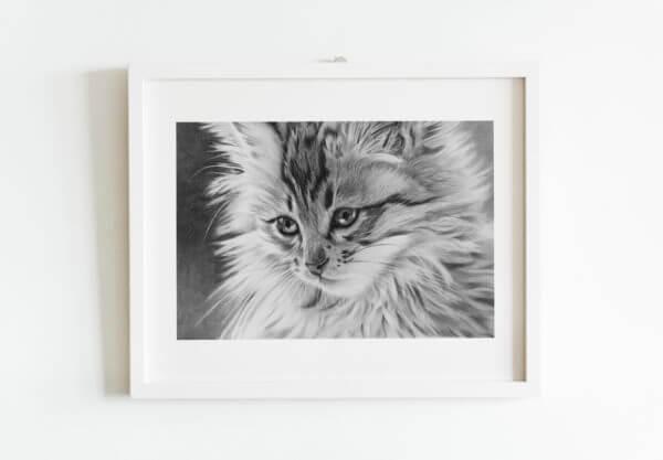 Black and white kitten drawing | Cat lover art gift