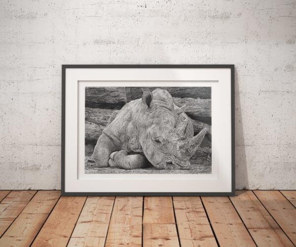African rhino drawing | Art print