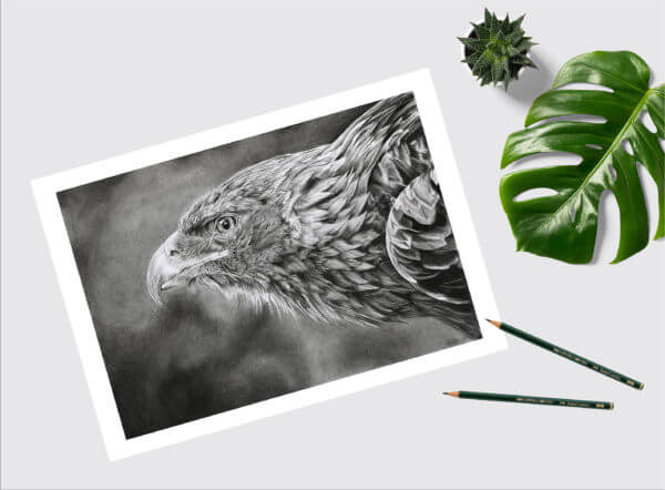 Bird lover art gift| Eagle picture | print