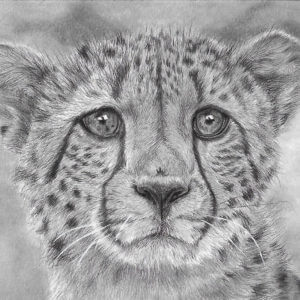 'Gone In A Flash' | Cheetah Artwork | Original Wildlife Art