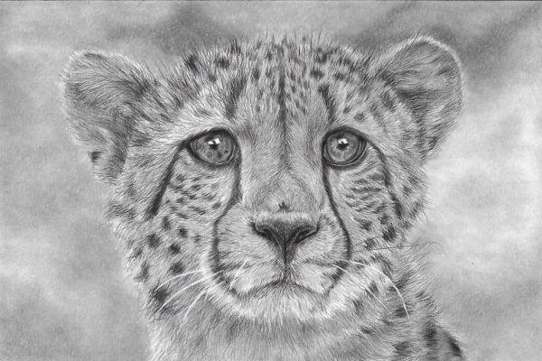'Gone In A Flash' | Cheetah Artwork | Original Wildlife Art