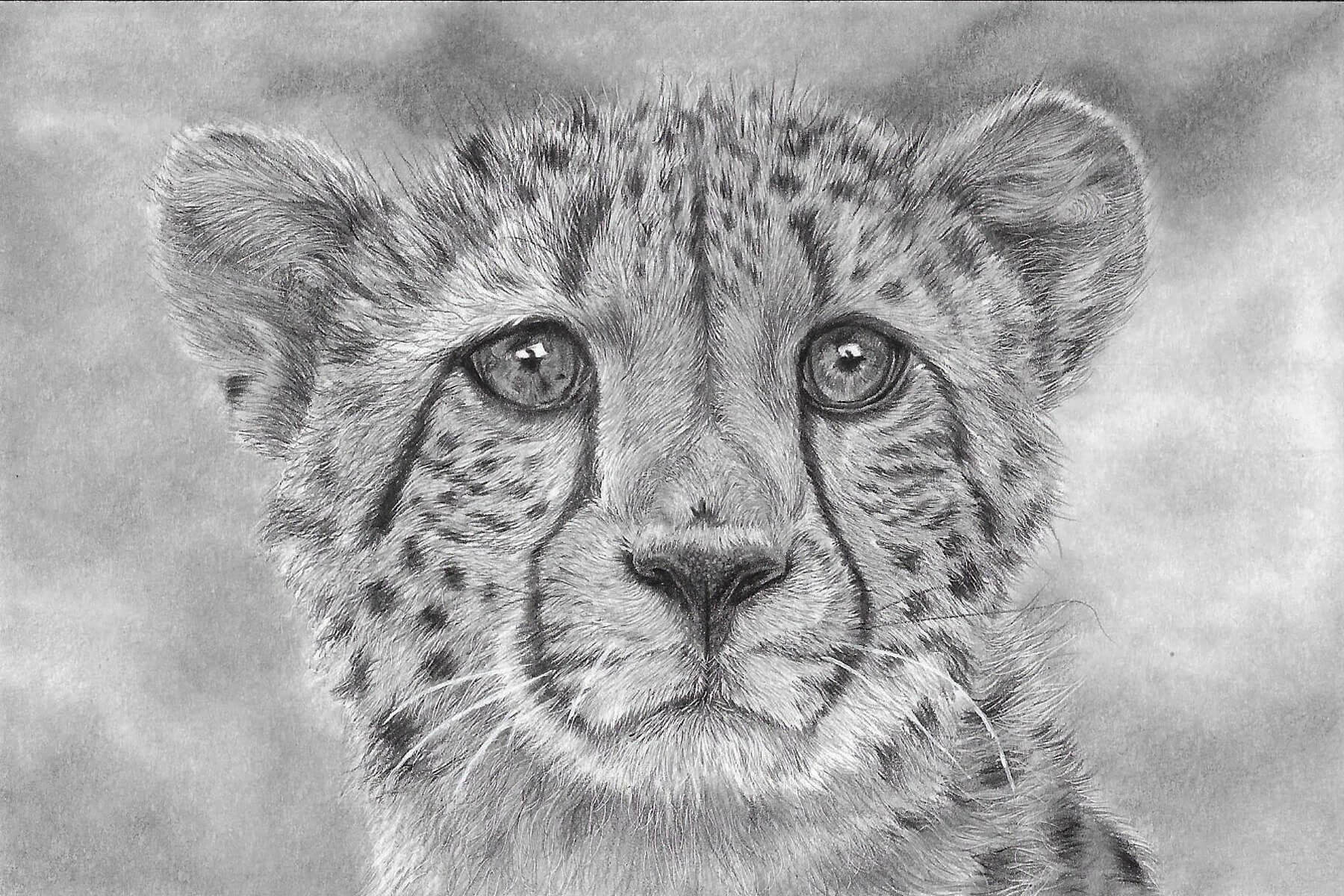 Limited Edition print of my hand-drawn cheetah