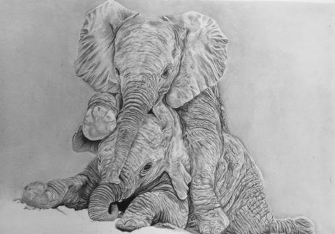 'Play Time' | Baby Elephant Artwork | Original Wildlife Art