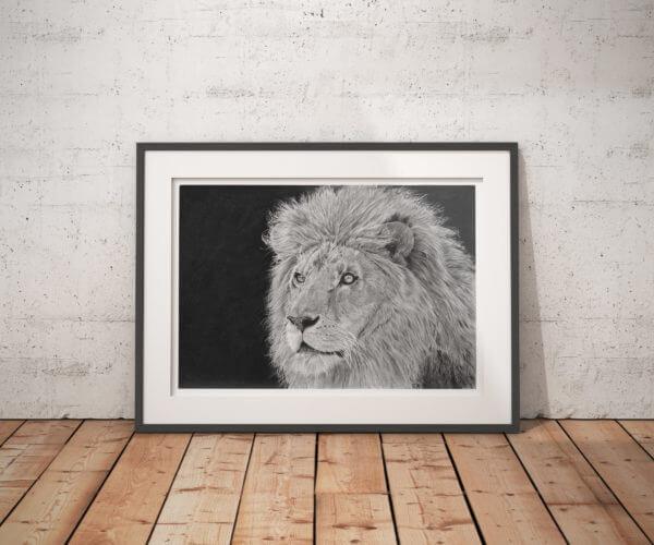 African Lion art print
