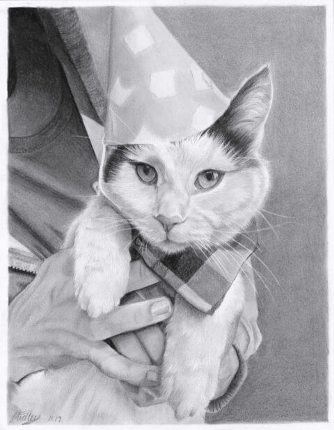 Pieroggi | Pet Portrait | Cat drawing