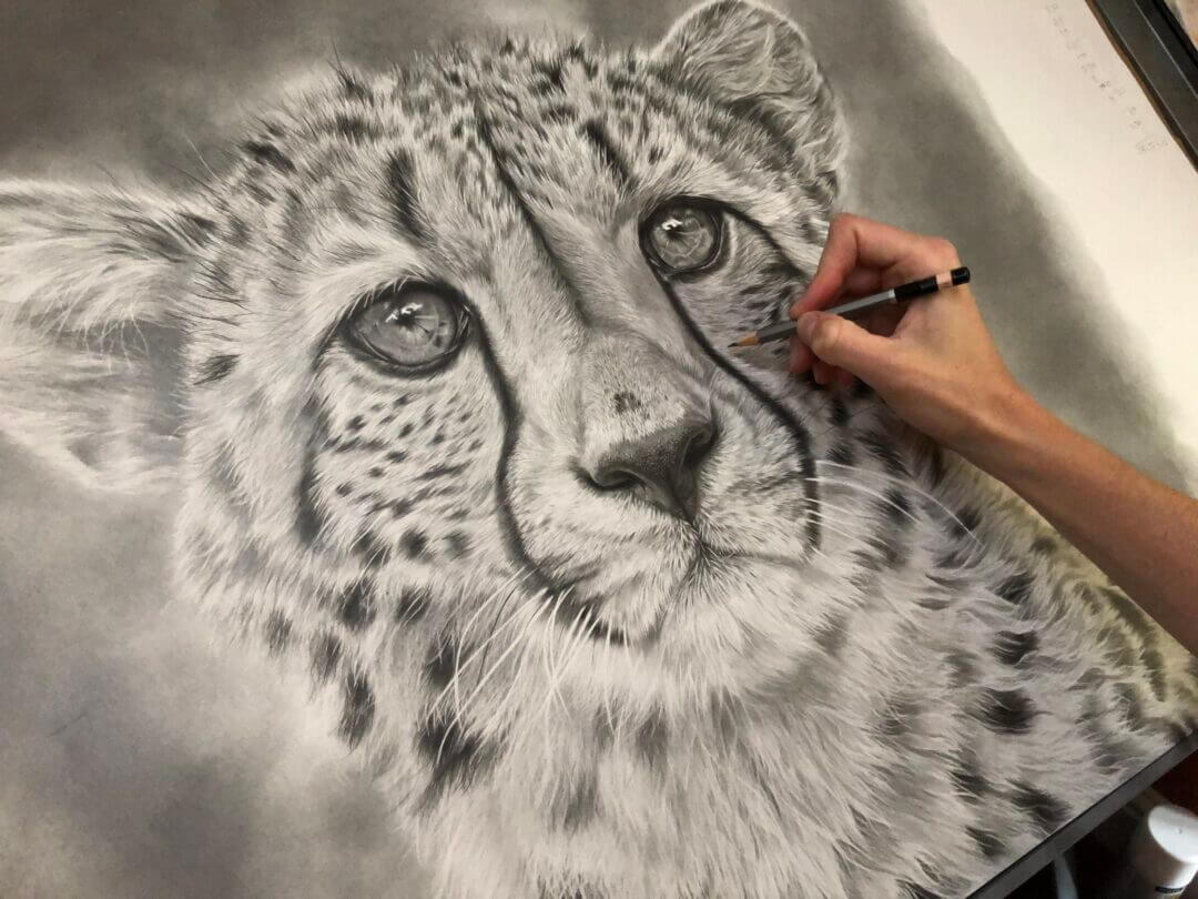 Big cat original artwork| Drawing Cheetahs