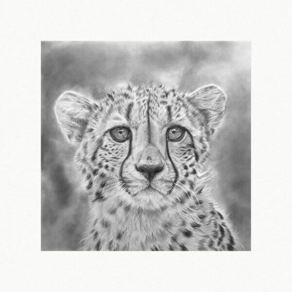 Original cheetah illustration | Cheetah artwork