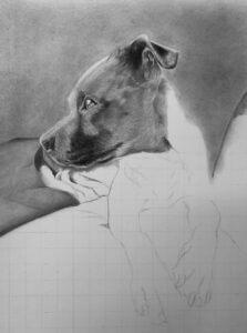 Nero | Pet Portrait