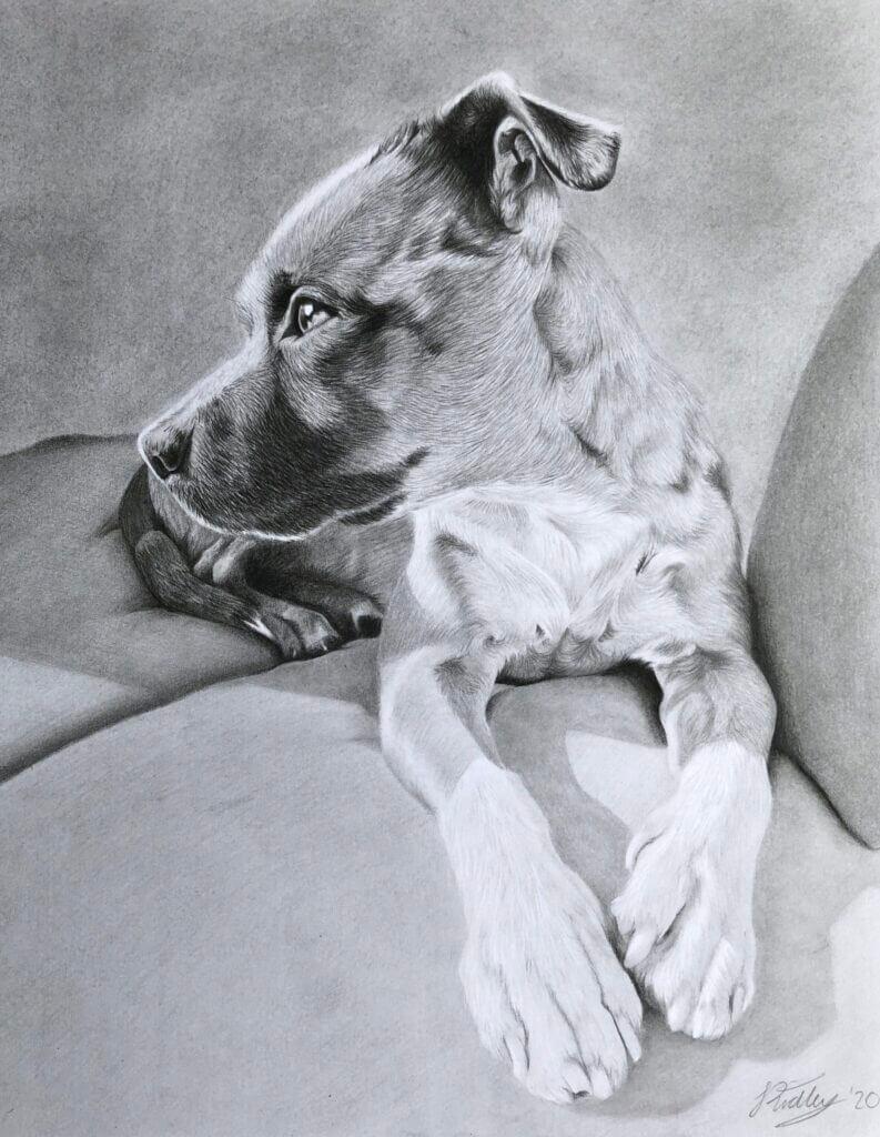Nero | Custom Dog Portraits