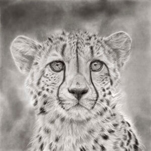 'Gone In A Flash'- large | Cheetah Artwork | Original Wildlife Art